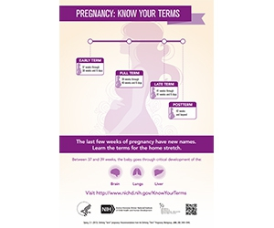 """Free """"Know Your Terms"""" Pregnancy Poster"""