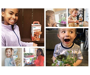 Free Back To The Roots Gardening Kits For Students