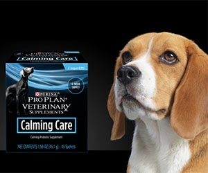 Free Purina Pro Plan Calming Care Probiotic Supplements 45-Day Supply