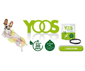 Free YOOS Essential Oil Collar For Dogs