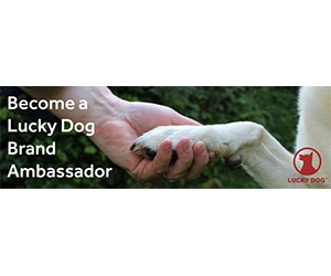 Free Dog Food, Toys, Accessories, Crates And More From Lucky Dog