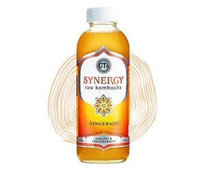 Free GT's Synergy Raw Kombucha Bottle