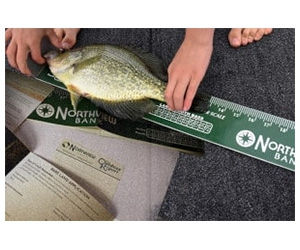 Free Fish Ruler And Information Packet