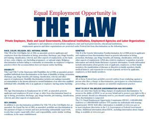 """Free """"EEO is the Law"""" Poster"""