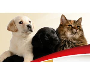 Free Dog & Cat Trophy Complete Pet Food Samples